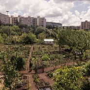Urban gardens: return to earth and to community